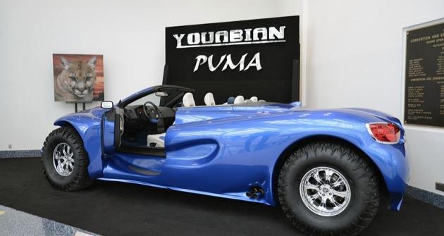 02-youabian-puma 83141