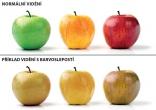 jablka-barvoslepost 103513