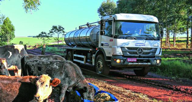 Mercedes-Benz do Brazil jako součást velkého koncernu Daimler AG dodává nákladní vozidla určená pro celou řadu různých provozů – třeba pro svoz mléka a jeho derivátů.