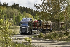 Nordická lesní souprava R650 6x4, 25,25 m a 52 t